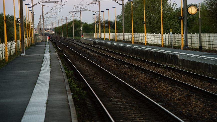 """""""La grève devient insupportable pour les voyageur"""", écrit la FNAUT qui ajoute que sa prolongation """"met le système ferroviaire en danger""""."""
