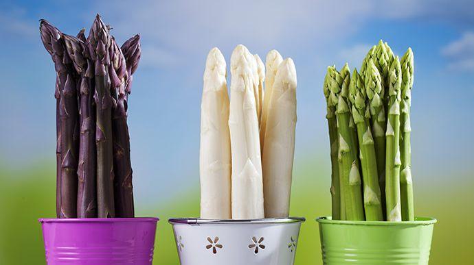 Le légumes du printemps par excellence