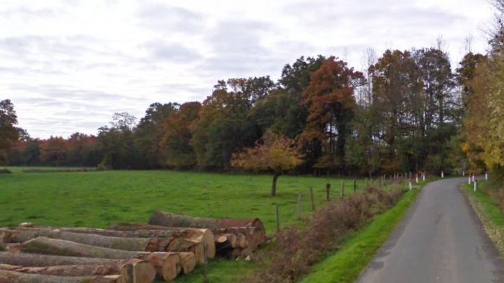 Paysage du Nord Mayenne