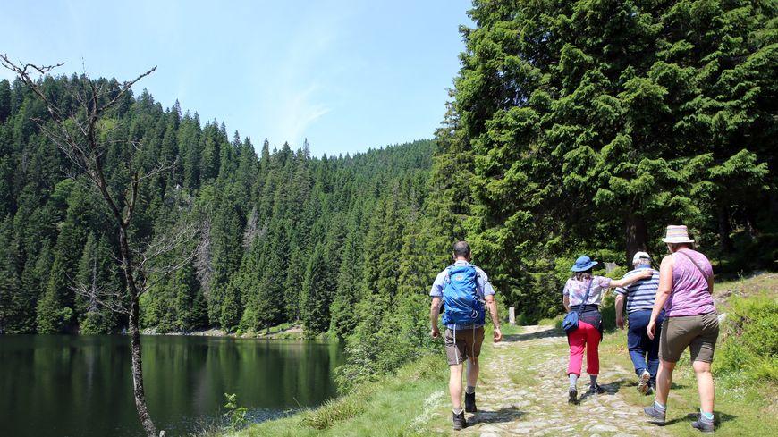 Plus de 20 000 km de sentiers sont balisés dans le massif des Vosges
