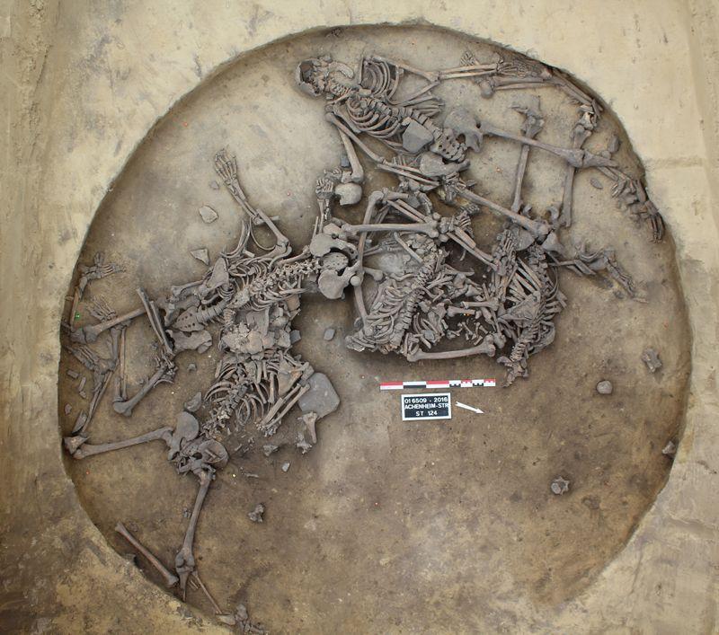 """Corps néolithiques """"massacrés """"site d'Achenheim"""