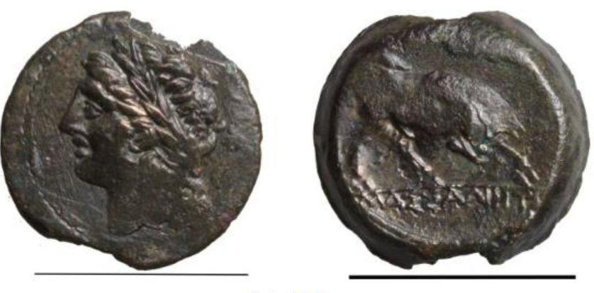 Monnaie Massaliote, tête d'Apollon et taureau