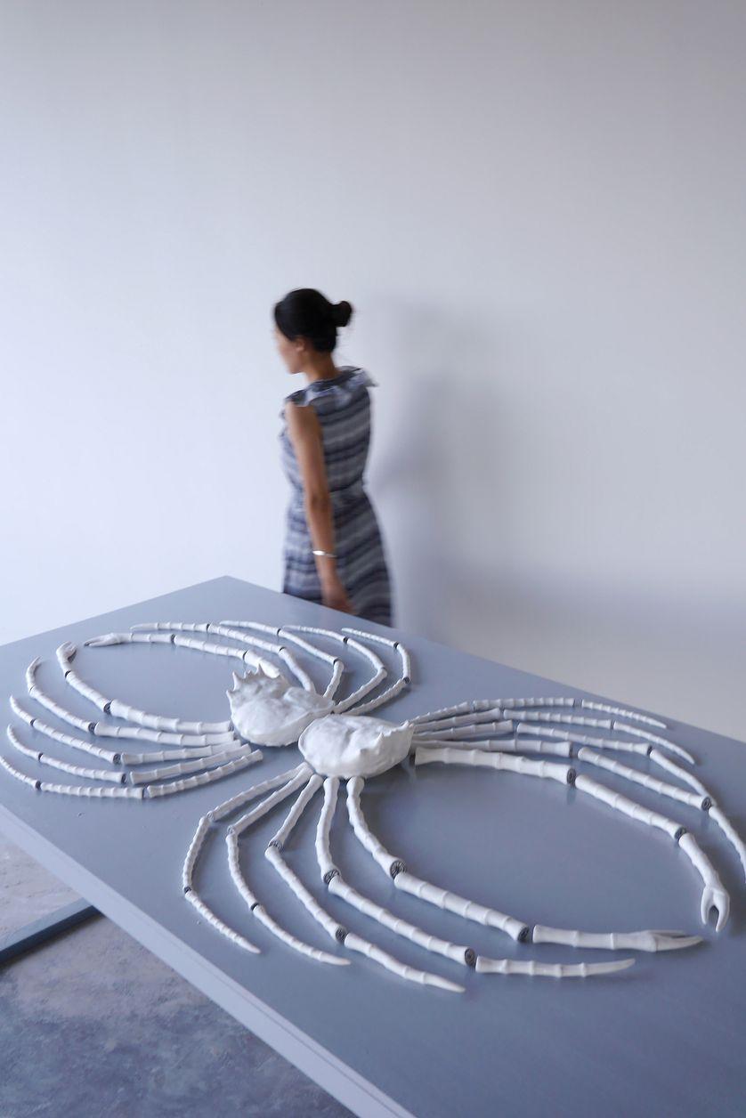 """Elsa Guillaume, """"Mésoplagie"""", 2017, Porcelaine"""