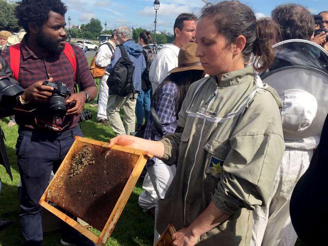 Marie Georgi a enregistré près de 80% de perte au sein de sa colonie d'abeilles.