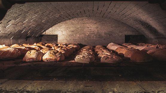 Des pains en cuisson