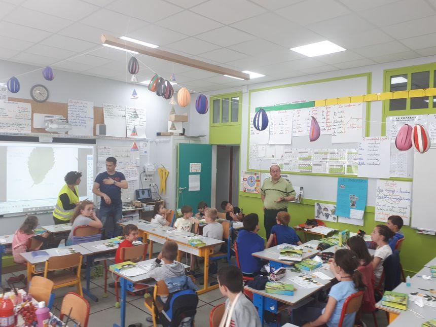 forêt expliquée dans l'école primaire de Pontonx