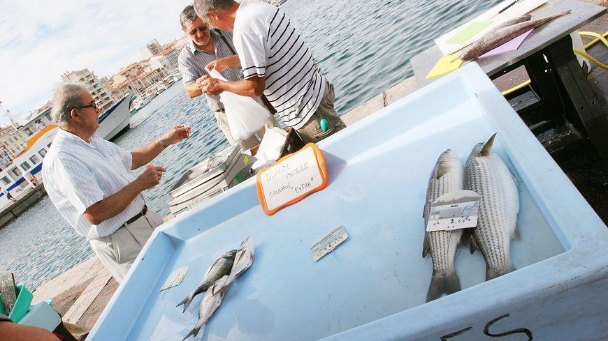 Le marché au poisson du Vieux-Port se tient tous les jours de 8h à 13h.