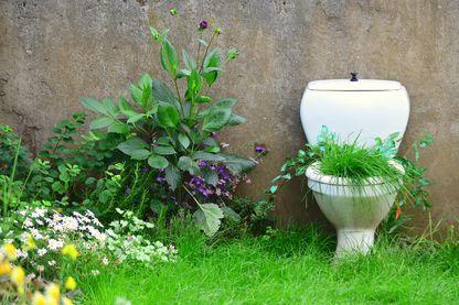 L'écologie ne s'arrête pas à la porte des toilettes