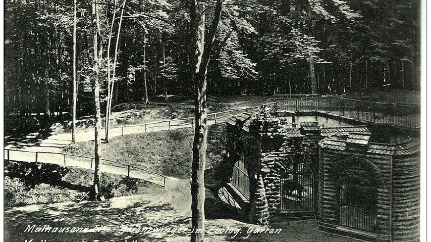 Carte postale ancienne de la collection Delcampe : la fosse à l'ours