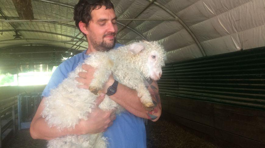 Maxence Fleygnac tient dans les bras un tout jeune chevreau. Adulte, celui-ci sera tondu deux fois par an en février et eu août.