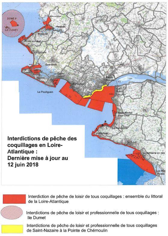La pêche à pied est interdite sur tout le littoral de la Loire-Atlantique - Aucun(e)