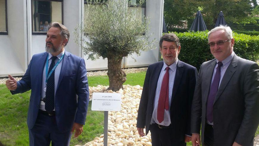 Un olivier planté pour les 50 ans. De gauche à droite : Fabien Daresse, le directeur de Mylan Mérignac; Alain Anziani, le maire de Mérignac, et Jacek Glinka, président de Mylan Europe
