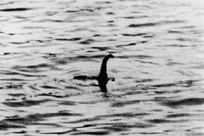 Toute première photo du monstre du Loch Ness prise en 1934 par Robert Wilson, chirurgien anglais et publiée par le Daily Mail.