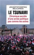 Le tsunami : chronique secrète d'une année  politique pas comme les autres