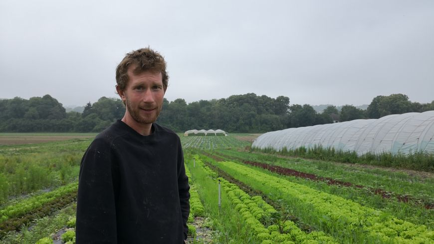 Fabien Frémin cultive des terres aux Mureaux (Yvelines) depuis maintenant 10 ans. Il y fait pousser des pommes de terre, des tomates mais aussi des concombres.