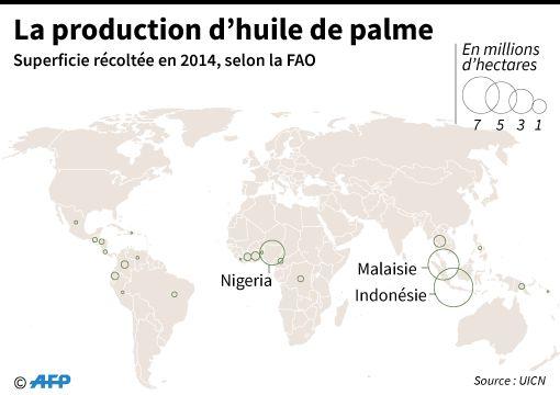 Production d'huile de palme en 2014 selon la FAO