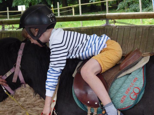 Avant de récompenser son poney Boy, Jules le câline