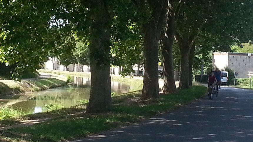 Le canal de Berry à St-Amand-Montrond (Cher) - Radio France