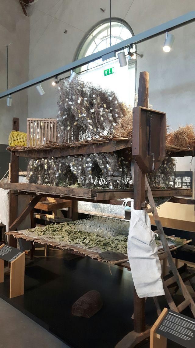 Elevage de vers à soie (musée des vallées cévenoles)