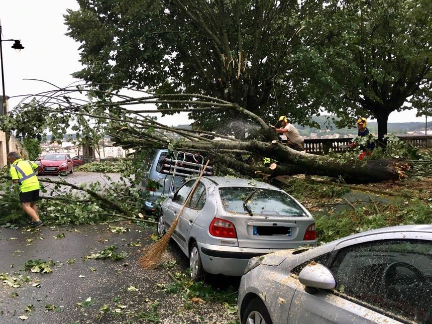 Des arbres couchés sur des voitures sur les allées Tourny à Périgueux