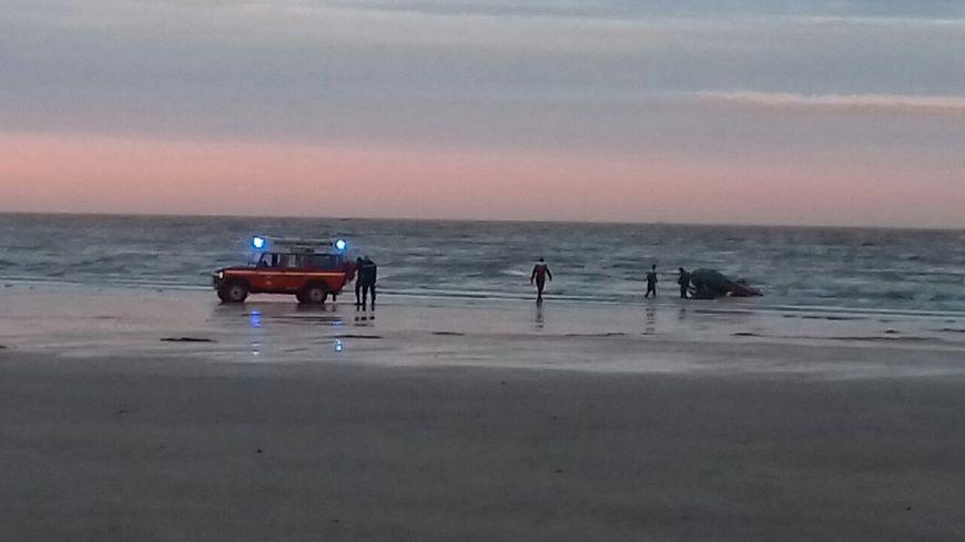 Un homme de 53 ans s'est noyé ce jeudi soir  au large de Merville-Franceville (14)