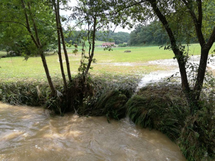 Le ruisseau qui a débordé à Villefranque est rentré dans son lit dans la matinée, laissant derrière lui des champs dévastés