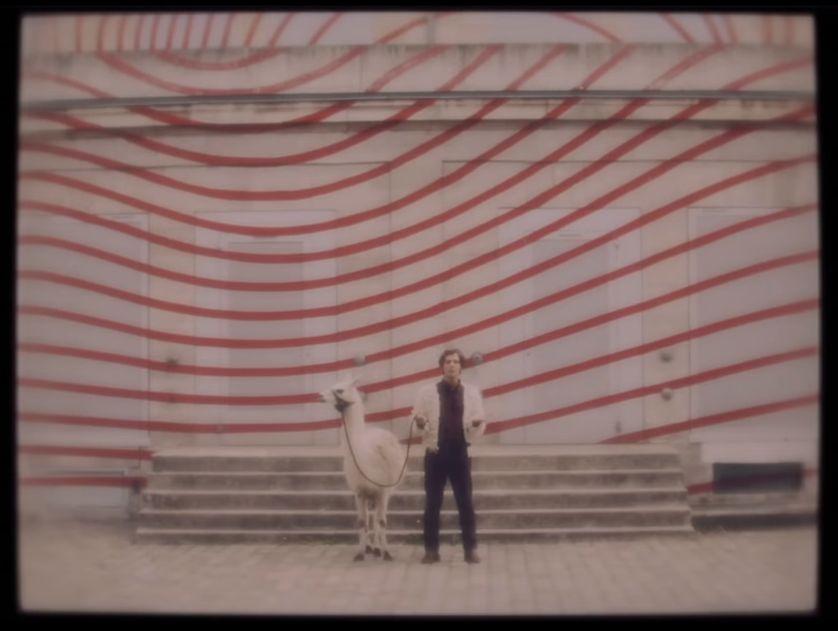 "Image extraite du clip ""Llama Fur"" de Jackie Moontan"