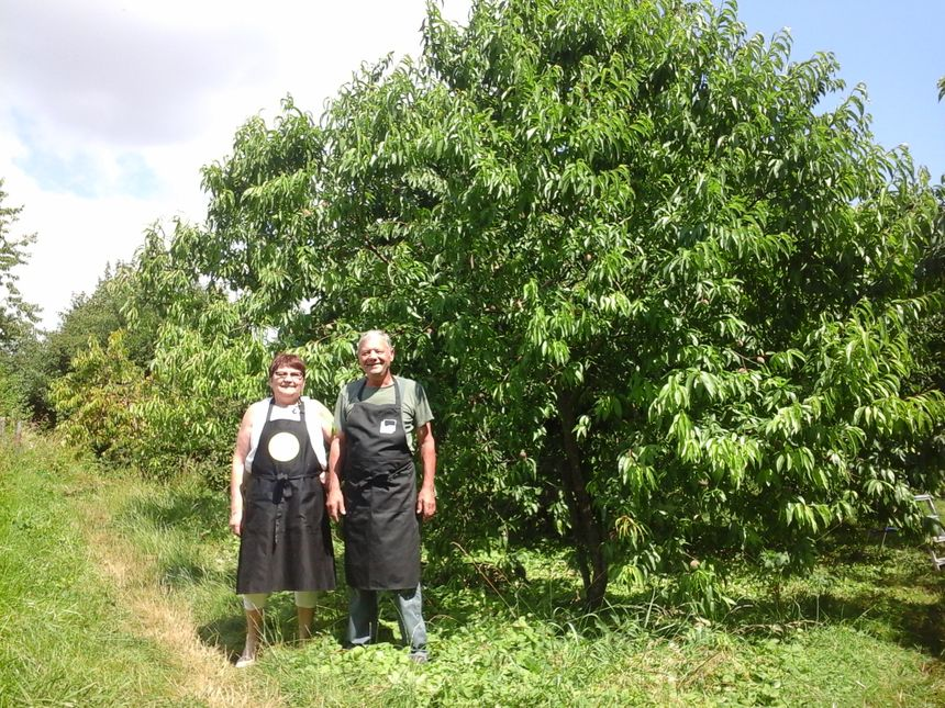 Pêchers, cerisiers, poiriers, ... Josette et Philippe Choinel n'ont du Frêne que sur leur adresse de vie d'aujourd'hui !