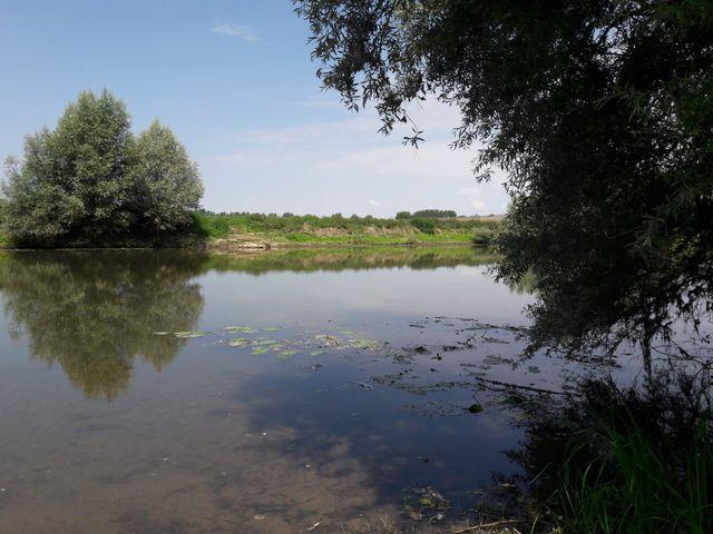 Les bords de la Sarthe, à Briollay (Maine-et-Loire)