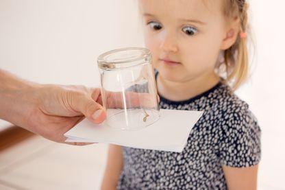 Phobie. Une petite fille regarde avec horreur une araignée coincée dans un verre.