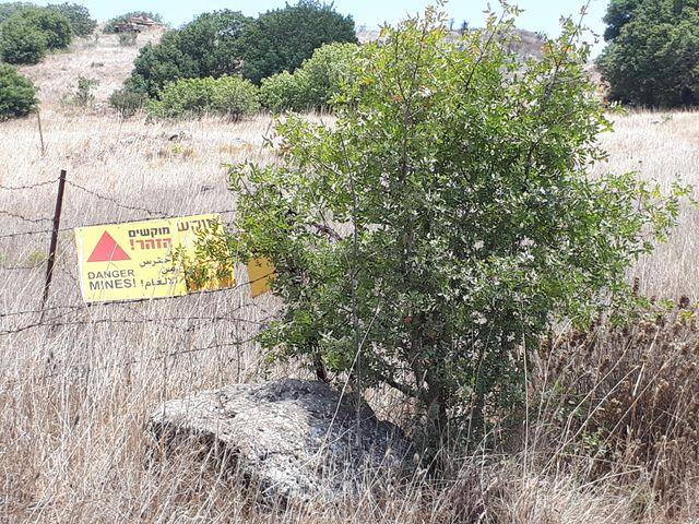 Champ de mines toujours actives sur le plateau du Golan