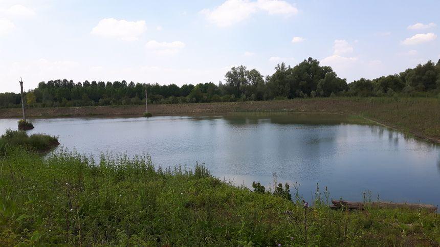 Une des zones humides ou sera aménagée une frayère à poissons