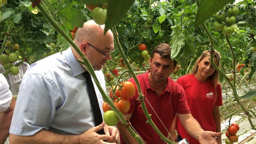 Le ministre de l'Agriculture Stéphane Travert en visite dans l'exploitation de tomates de Serge Aravecchia, qui travaille sans pesticides