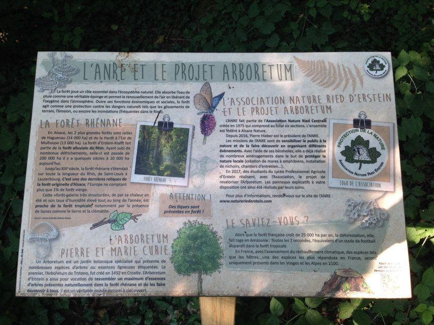 Petite explication du projet Arboretum !