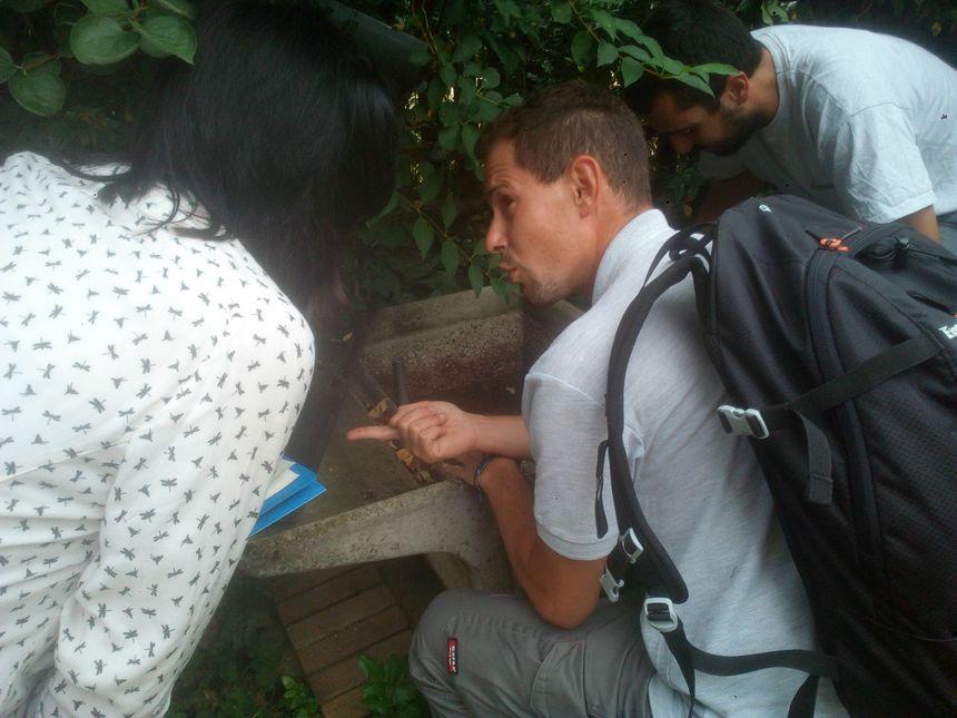 Sur le doigt de Loïc Mouyon, agent de l'EID, des œufs de moustique pondus sur les parois. Le moustique-tigre préfère pondre dans ou à la surface de l'eau. - Radio France