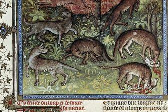 """Miniature tirée du manuscrit """"Le livre de la chasse"""" de Gaston Phoebus ( 1331-1391 )"""