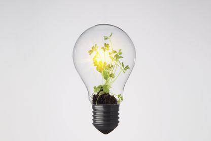 Si on veut continuer à s'éclairer et se chauffer sans faire monter la température, il faudrait peut-être sérieusement envisager de baisser notre consommation et se tourner vers une électricité plus verte !