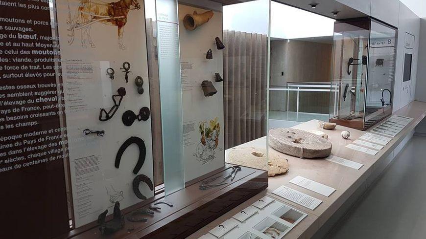 Archéa, Archéologie en Pays de France - Louvres (95).
