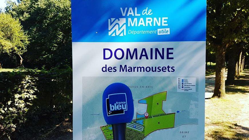 Parc départemental des Marmouzets (94).