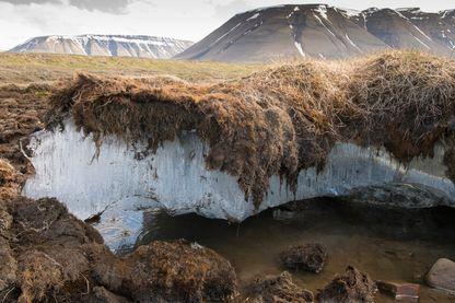 Fonte du permafrost dans la région arctique (Svalbard en Norvège)