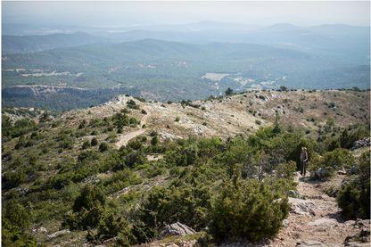 Anne Vallaeys et Marie Bousseau ont choisi de refaire la longue marche de la transhumance à travers les Alpes