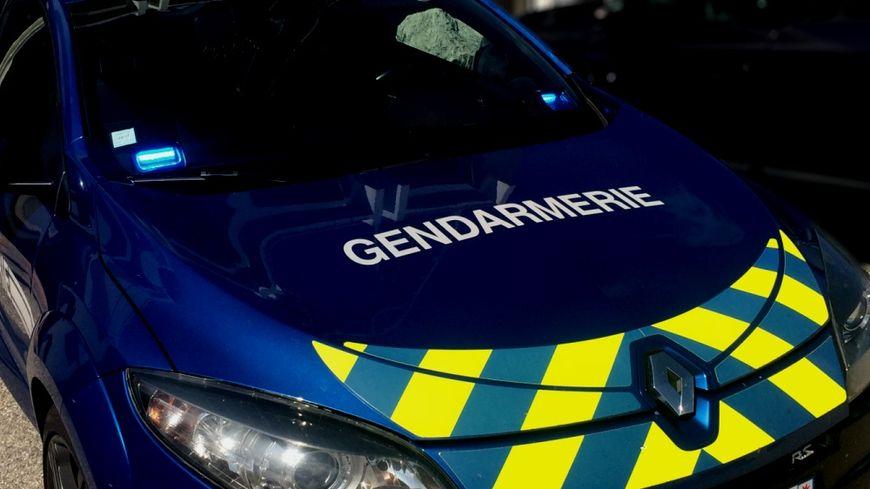 Un véhicule d'intervention rapide de la Gendarmerie nationale (illustration).