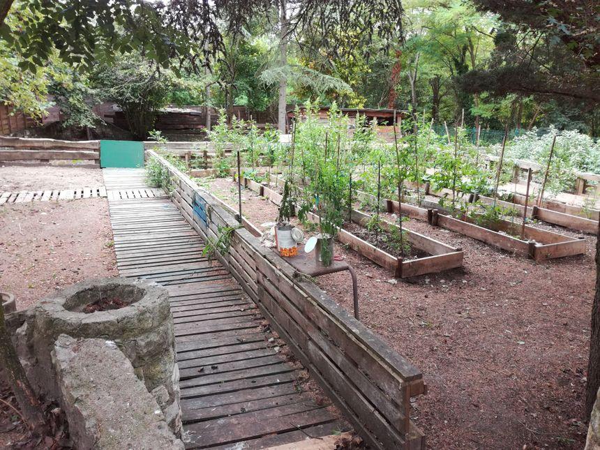 Le potager de la ferme