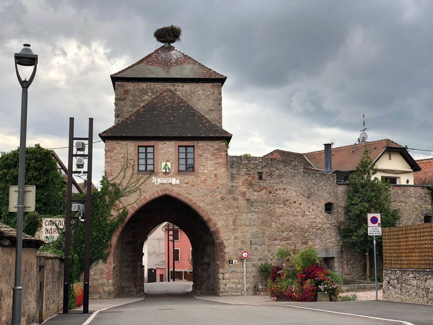 La commune de Dambach-la-Ville, surplombée par les cigognes...