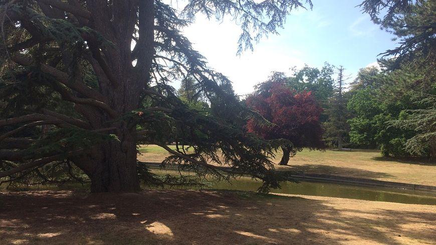 Le jardin du Trocadéro - Domaine national de Saint-Cloud