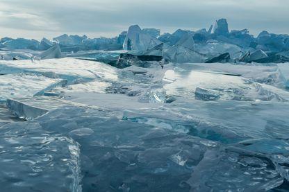 deux vers de terre enfouis dans le permafrost sibérien et endormis depuis 30 000 et 42 000 ans ont été réveillés.