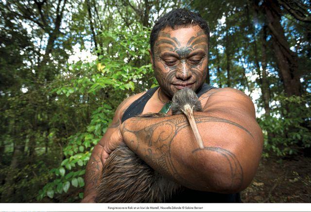 Rangi-te-ao-re-re Raki et un kiwi de Mantell, Nouvelle-Zélande