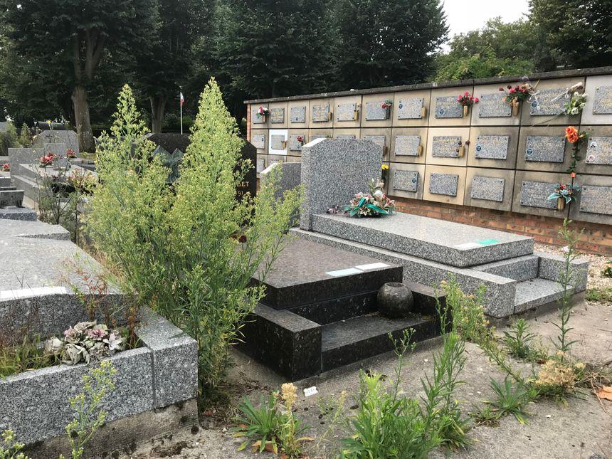Dans les allées du cimetière Nord du Havre