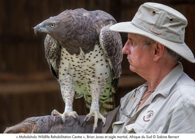 Brian Jones et aigle martial, Afrique du Sud
