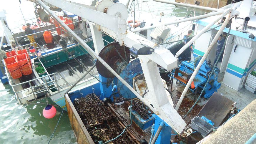 Les pêcheurs normands se mobilisent contre leurs homologues britanniques sur fond de pêche à la coquille saint jacques ( photo d'illustration)